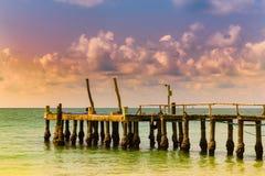Λιμενοβραχίονας πέρα από seacoast τον τόνο ηλιοβασιλέματος οριζόντων Στοκ εικόνες με δικαίωμα ελεύθερης χρήσης