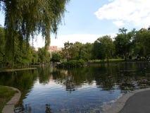 Λιμνοθάλασσα και νησί, δημόσιος κήπος της Βοστώνης, Βοστώνη Μασαχουσέτη, ΗΠΑ Στοκ φωτογραφία με δικαίωμα ελεύθερης χρήσης