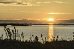 Λιμνοθάλασσα κοιλάδων Comacchio Στοκ φωτογραφία με δικαίωμα ελεύθερης χρήσης