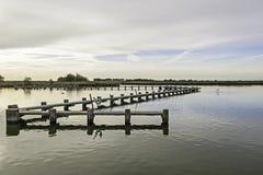 Λιμνοθάλασσα κοιλάδων Comacchio Στοκ φωτογραφίες με δικαίωμα ελεύθερης χρήσης
