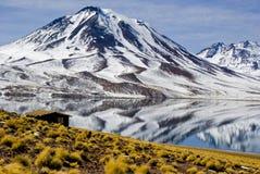 Λιμνοθάλασσα Miscanti στοκ εικόνα