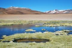 Λιμνοθάλασσα Quepiaco, Χιλή Στοκ φωτογραφίες με δικαίωμα ελεύθερης χρήσης