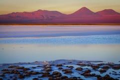 Λιμνοθάλασσα Tebenquinche και ηφαίστειο Licancabur σε SAN Pedro de Ataca Στοκ Φωτογραφίες