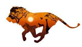 Λιοντάρι με τις σκιαγραφίες της σαβάνας 2 ζώων ελεύθερη απεικόνιση δικαιώματος