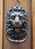λιοντάρι ρόπτρων πορτών Στοκ φωτογραφία με δικαίωμα ελεύθερης χρήσης