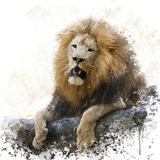 Λιοντάρι σε ένα watercolor βράχου Στοκ φωτογραφία με δικαίωμα ελεύθερης χρήσης