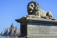 Λιοντάρι στη γέφυρα αλυσίδων και το Κοινοβούλιο στη Βουδαπέστη, Ουγγαρία Στοκ Φωτογραφία