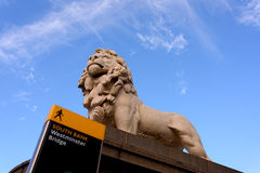 Λιοντάρι του Γουέστμινστερ Στοκ φωτογραφία με δικαίωμα ελεύθερης χρήσης