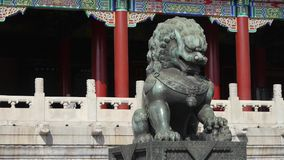 Λιοντάρι χαλκού μπροστά από την απαγορευμένη πόλη, βασιλική αρχαία αρχιτεκτονική της Κίνας απόθεμα βίντεο