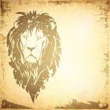 Λιοντάρι Backround Στοκ Φωτογραφίες