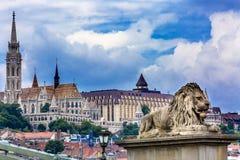 Λιοντάρι Matthias Church Βουδαπέστη Ουγγαρία γεφυρών αλυσίδων Στοκ Φωτογραφίες