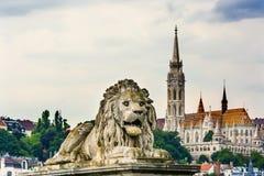 Λιοντάρι Matthias Church Βουδαπέστη Ουγγαρία γεφυρών αλυσίδων Στοκ φωτογραφία με δικαίωμα ελεύθερης χρήσης