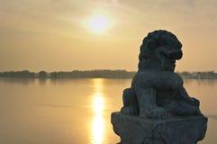 Λιοντάρι Shishi Στοκ εικόνες με δικαίωμα ελεύθερης χρήσης