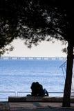 ΛΙΣΣΑΒΩΝΑ, ΠΟΡΤΟΓΑΛΙΑ - 31 Ιανουαρίου 2011: Πάρκο των εθνών, με το Β Στοκ Φωτογραφία