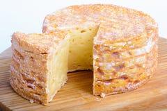Λιχουδιές, τυρί που καλύπτεται με το ωίδιο στοκ φωτογραφία με δικαίωμα ελεύθερης χρήσης