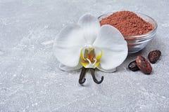 Λοβοί βανίλιας με ένα λουλούδι, μια σκόνη κακάου και τα φασόλια ως συστατικό για το ψήσιμο στοκ φωτογραφία με δικαίωμα ελεύθερης χρήσης