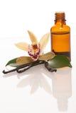 Λοβοί βανίλιας, aromatherapy έλαιο και λουλούδια ορχιδεών που απομονώνονται στο wh Στοκ Εικόνες