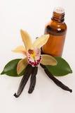Λοβοί βανίλιας, aromatherapy έλαιο και λουλούδια ορχιδεών που απομονώνονται στο wh Στοκ Εικόνα