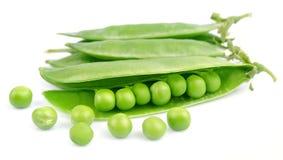 λοβοί πράσινων μπιζελιών στοκ εικόνα