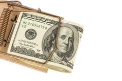 Λογαριασμοί δολαρίων στην ποντικοπαγήδα Στοκ Φωτογραφία