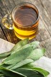 Λογικά τσάι και φύλλα Στοκ Εικόνα