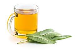Λογικά τσάι και φύλλα Στοκ Φωτογραφίες