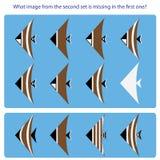 Λογικός στόχος Βρείτε ποια εικόνα από το δεύτερο σύνολο λείπει μέσα ελεύθερη απεικόνιση δικαιώματος