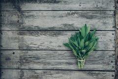 λογικό salvia officinalis πεδίων Λογικά φύλλα στον παλαιό ξύλινο πίνακα Φασκομηλιά κήπων Αγροτικό ξύλινο κιβώτιο και χειροποίητη  Στοκ εικόνα με δικαίωμα ελεύθερης χρήσης