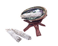 Λογικό smudge ραβδί και φωτεινό γυαλισμένο κοχύλι φυτωρίου ουράνιων τόξων Στοκ Εικόνες
