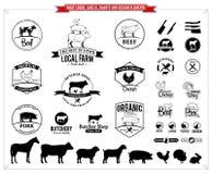 Λογότυπα κρέατος, ετικέτες, διαγράμματα και στοιχεία σχεδίου Στοκ Εικόνα