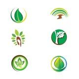 Λογότυπα - πράσινο οικολογικό σύστημα Στοκ Εικόνες