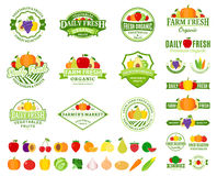 Λογότυπα φρούτων και λαχανικών, ετικέτες, εικονίδια φρούτων και λαχανικών Στοκ φωτογραφίες με δικαίωμα ελεύθερης χρήσης