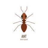 Λογότυπο μυρμηγκιών κινούμενων σχεδίων Colorfu απεικόνιση αποθεμάτων