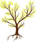 Λογότυπο ριζών δέντρων - διάνυσμα Στοκ Φωτογραφίες