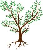 Λογότυπο ριζών δέντρων - διάνυσμα Στοκ φωτογραφίες με δικαίωμα ελεύθερης χρήσης
