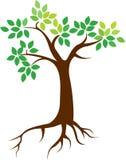 Λογότυπο ριζών δέντρων Στοκ φωτογραφίες με δικαίωμα ελεύθερης χρήσης