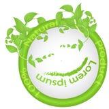 Λογότυπο 100 φυσικό προϊόν, με τα φύλλα, τους κλάδους και τους μίσχους με τον πράσινο λεκέ Στοκ Εικόνες