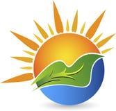 Λογότυπο φύλλων Eco Στοκ Εικόνα