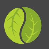 Λογότυπο Yin Yang φύλλων Στοκ Φωτογραφίες