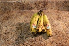 Λονδίνο Οντάριο Καναδάς, στις 19 Μαρτίου 2018: εκδοτική επεξηγηματική φωτογραφία των ώριμων μπανανών της Del Monte σε ένα καλάθι  Στοκ Εικόνες