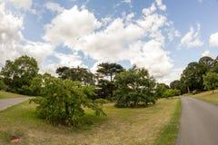 ΛΟΝΔΙΝΟ, UK, άποψη από τους κήπους Kew στοκ φωτογραφία