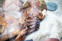 ΛΟΝΔΙΝΟ, UK, άτομο Gebelein - μια από τις καλύτερα συντηρημένες μούμιες από Predynastic Αίγυπτος στο βρετανικό μουσείο Στοκ εικόνες με δικαίωμα ελεύθερης χρήσης