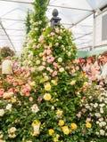 ΛΟΝΔΙΝΟ, UK - 25 ΜΑΐΟΥ 2017: Το λουλούδι RHS Chelsea παρουσιάζει 2017 Στοκ Φωτογραφίες
