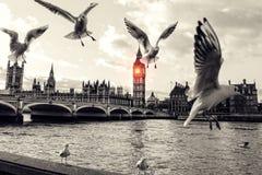 Λονδίνο Στοκ φωτογραφίες με δικαίωμα ελεύθερης χρήσης