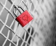 Λουκέτο καρδιών βαλεντίνων που συνδέεται με το φράκτη πλέγματος καλωδίων Στοκ Εικόνες