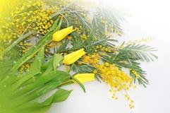 Λουλούδια άνοιξη για την ημέρα μητέρων Στοκ εικόνες με δικαίωμα ελεύθερης χρήσης