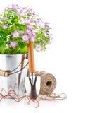 Λουλούδια άνοιξη σε έναν κάδο με τα εργαλεία κήπων Στοκ Εικόνες