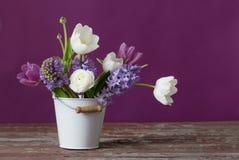 Λουλούδια άνοιξη στον κάδο στο ρόδινο υπόβαθρο Στοκ φωτογραφία με δικαίωμα ελεύθερης χρήσης