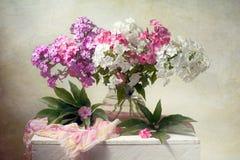 Λουλούδια άνοιξη Στοκ Φωτογραφία