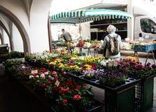 Λουλούδια αγοράς γυναικών σε μια αγορά Στοκ Φωτογραφίες